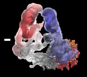 Bacterial Signaling, Nature Communications, 2015